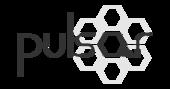 PULSAR (OG8)