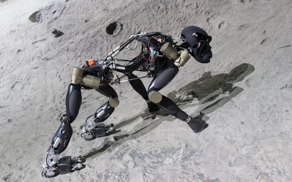 """Der vierbeinige Laufroboter """"Charlie"""" erklimmt die künstliche Kraterumgebung in der Weltraumexplorationshalle des DFKI in Bremen."""